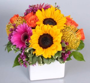 sunflowers with pink daisis adn orange roses in cube vase